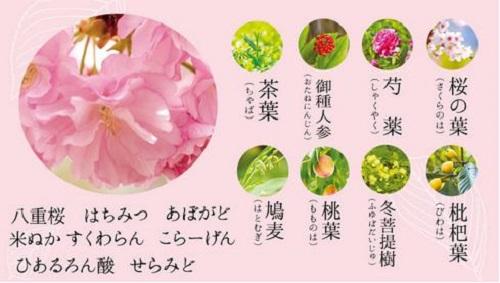 「桜と七草のハーブで作ったお水のクリーム」16種類
