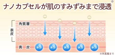 ヒト幹細胞エキス配合「ナノア美容液」浸透